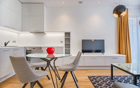 Light And Modern Apartment1